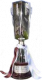 Italiaanse supercup winnaar (Primavera)