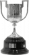Vencedor da Taça de Espanha (Copa del Rey)