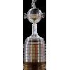 Vincitore della Copa Libertadores