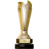 Slovenya Kupa Sampiyonu