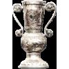 Vencedor da Taça da Hungria