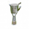 Georgian cup winner