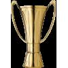 İsviçreli şampiyonu