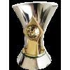 Brazilian champion