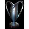 Polish cup winner