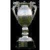 Vincitore della Coppa di Romania