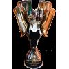 Iranian Champion