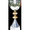 ASB Charity Cup winnaar (NZL)
