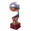 Romanian League Cup Winner
