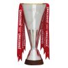 Football League Trophy-Gewinner