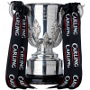English League Cup winner