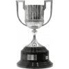 Spanish cup winner