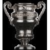 Swisscom Kupa Samypiyonu