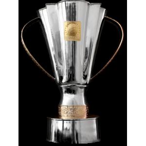 Ukrainischer Superpokalsieger
