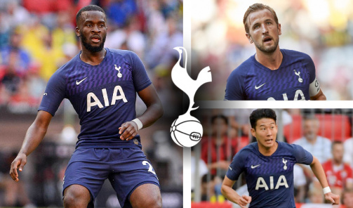 Tottenham's current squad sorted by market values