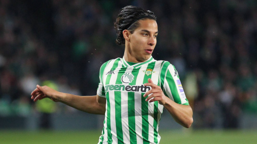 Image result for lainez