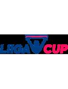 Liigacup