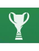 Copa de Georgia
