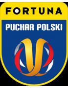 Copa de Polonia