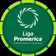 Primera División Invierno Playoff (bis 15/16)