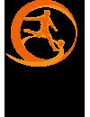 Europees Kampioenschap Onder 17 - 2019