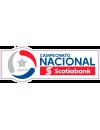 Primera División Transición