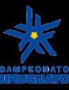 Campeonato Uruguayo Especial