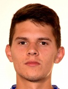 Karlo Lulic