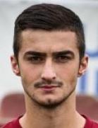 Mufid Salcinovic