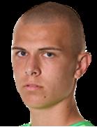 Luka Losic