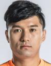 Tianyu Qi