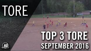 Top 3 Tore - September 2016 | RHEINKICK.TV