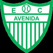 Esporte Clube Avenida (RS)