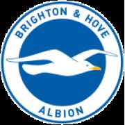 Brighton & Hove Albion Giovanili
