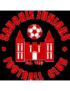 Sauchie Juniors FC