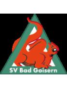 SV Bad Goisern