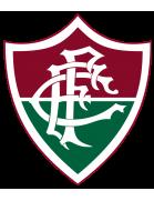 Fluminense Football Club U17