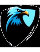 Air Force SC