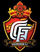 庆南足球俱乐部