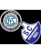 SG 1.FC Schwandorf/Ettmannsdorf III