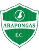 Arapongas Esporte Clube (PR)