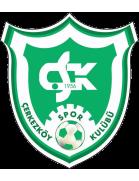 Çerkezköy Spor