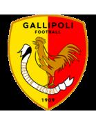 Gallipoli Juvenis