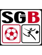 SG Birklar