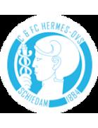 C & FC Hermes-DVS