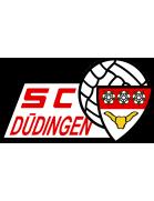 SC Düdingen Jugend