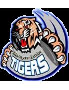 Tigers FC (Blantyre)