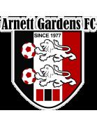 Arnett Gardens FC