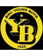 Team YB/AFF-FFV U17
