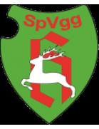 SpVgg Holzgerlingen